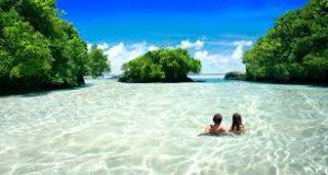Top 10 Universities In Samoa