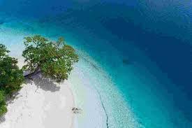 Top 10 Universities In Solomon Islands