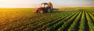 Agriculture Bursaries