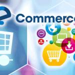 Commerce Bursaries