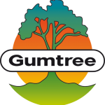 Gumtree South Africa Study Fund