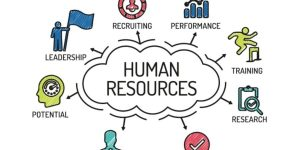 Human Resources Bursaries