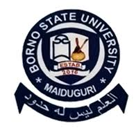 Courses Offered In Bornu State University