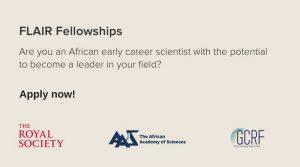 FLAIR Fellowships