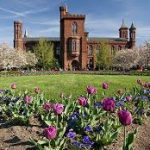 Smithsonian Institution Postdoctoral Fellowship
