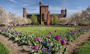 Smithsonian Institution Postdoctoral Fellowship