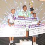The Ultimate Mathematics Ambassador Annual Competition