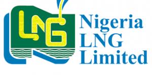 NLNG Undergraduate Scholarship Award