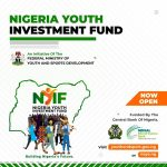 Nigeria Youth Investment Fund NYIF